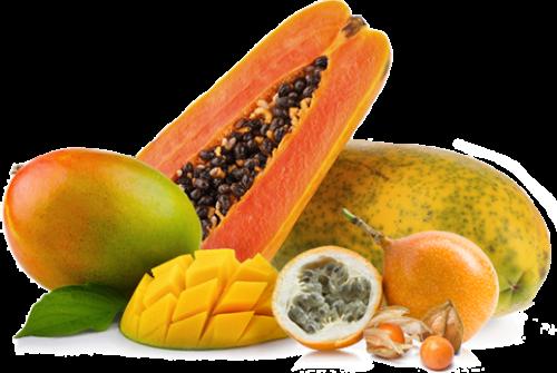 exotische_Früchte